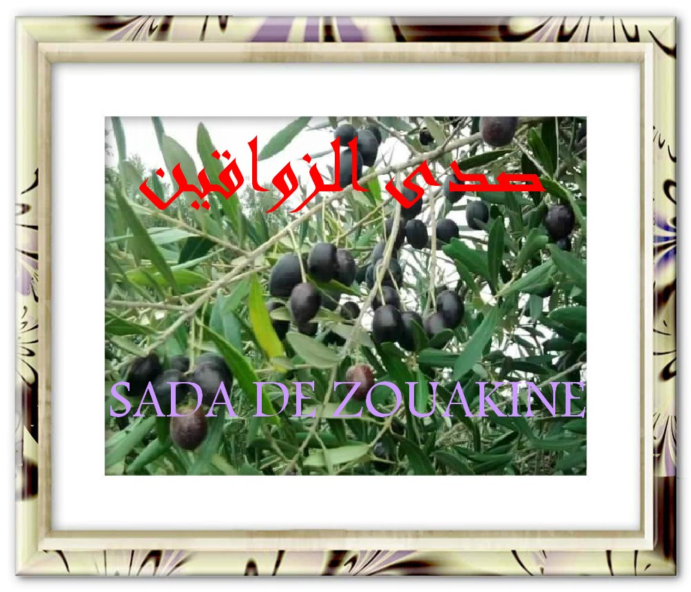 ��� �������� Echo de Zouakine