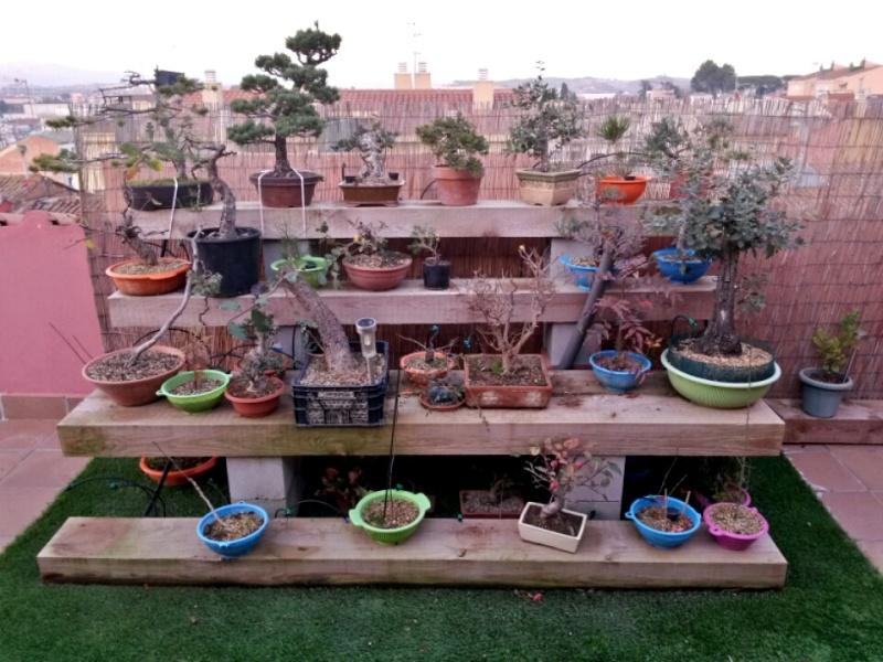 Mi terraza p gina 2 for Inscripcion jardin 2015