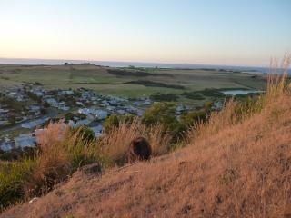 Un wallaby sur fonds de baie au couché du soleil... :D