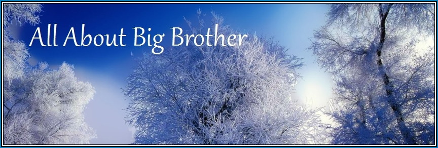 all about big brother ~ aabb