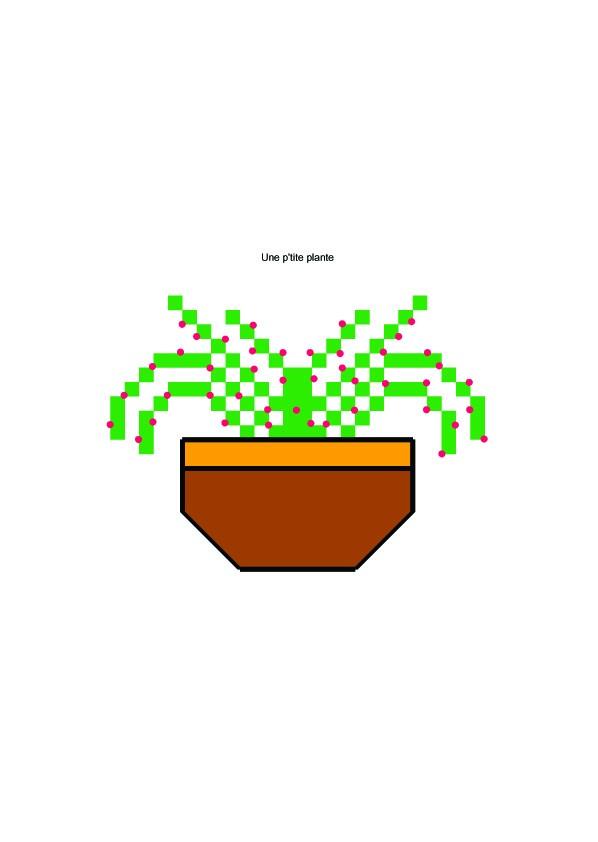 Photo plante