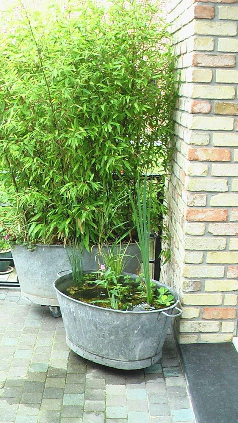 Meuble Salle De Bain Bas Bois ~ j ai cru voir une baignoire madame galva page 6 au jardin