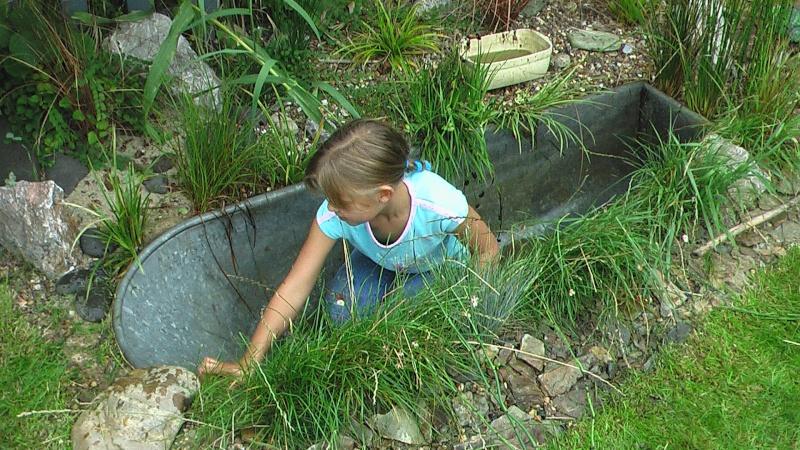 J 39 ai cru voir une baignoire madame galva page 6 au jardin forum - Que faire avec une vieille baignoire ...