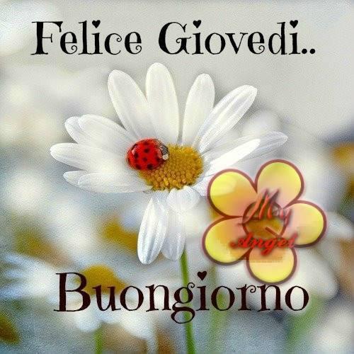 Buon giovedi a tuttiiiiiii for Foto per il buongiorno