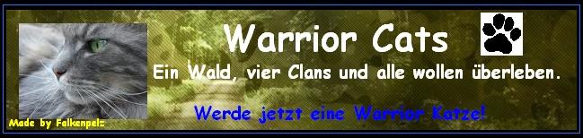 Warrior-Katzen