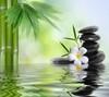 Lithothérapie, soins et protections