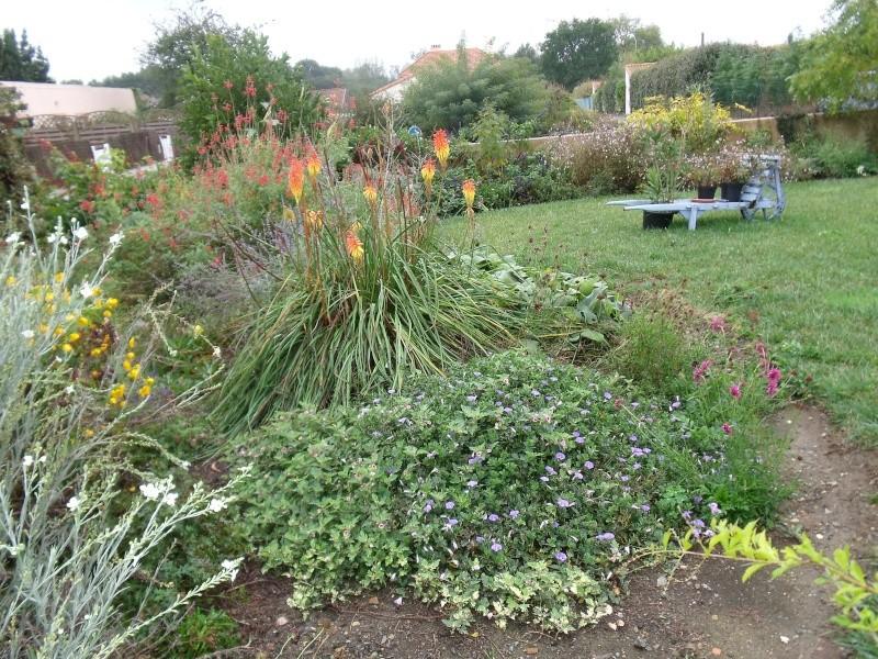 Encore quelques fleurs au jardin for Jardin encore