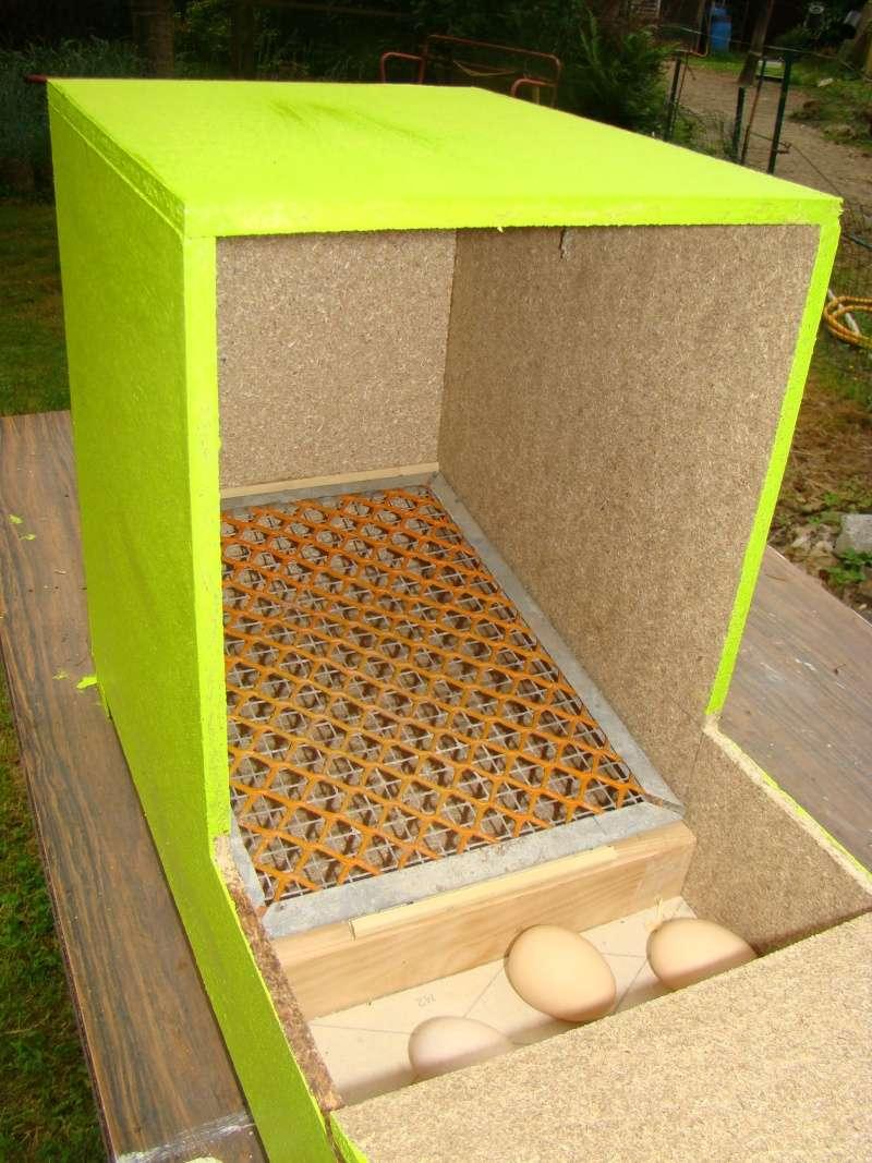 beau pondoir avec recuperateur d oeufs 8 une fois pondus les ufs glissent doucement dans. Black Bedroom Furniture Sets. Home Design Ideas