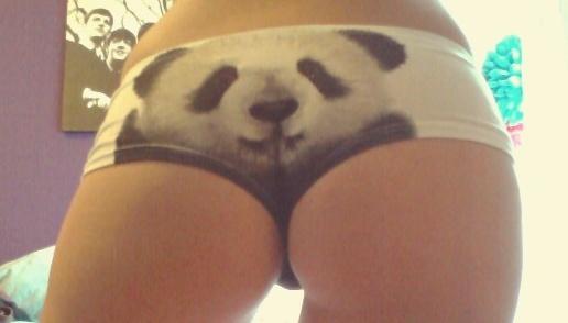 Forum des Pandas !
