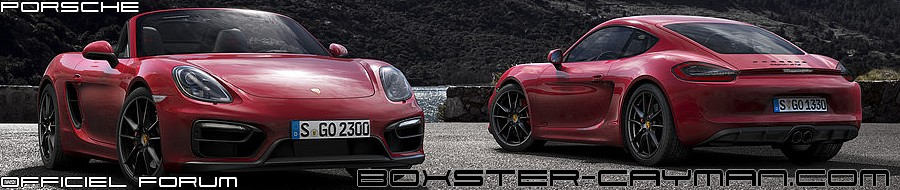 - BOXSTER - CAYMAN -