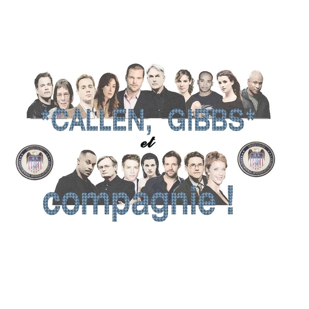 Callen, Gibbs et compagnie
