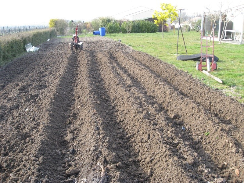 Plantation des pommes de terre - Date plantation pomme de terre ...