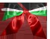 ● منتدى فلسًطُين  المحتلة  |ا «