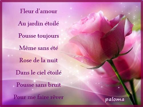 Fleur D Amour Etoiles De Mes Nuits
