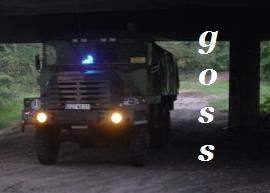 goss10.png
