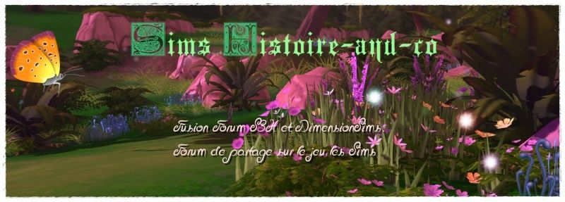 Sims Histoires-and-co
