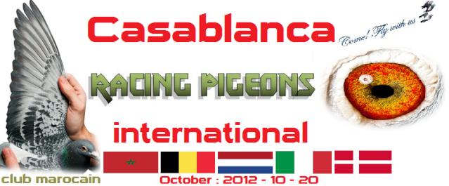 logo_110.png