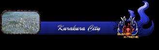 Centro de Karakura