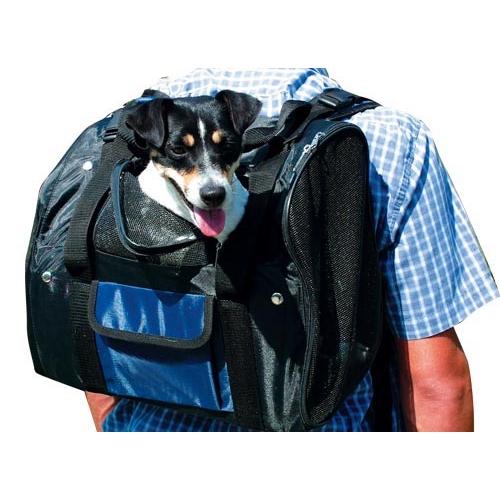 modes de transport pour petits vieux chiens qui. Black Bedroom Furniture Sets. Home Design Ideas
