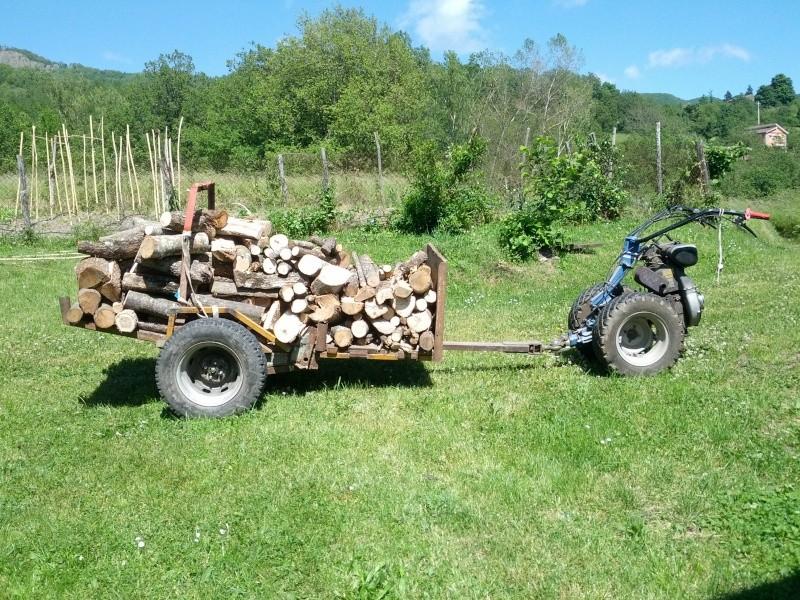 Schema Elettrico Per Carrello Appendice : Carrello per trasporto legna