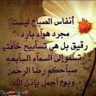 بالصور ادعية محمد البراك 01 19 12