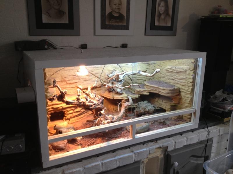 Fabrication d 39 un d cor d sertique pour terra de 120x60x60 - Decor fond terrarium desertique ...