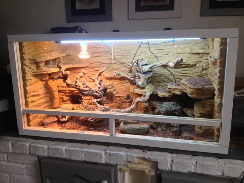 Fabrication Decor Terrarium Serpent