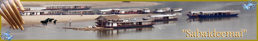 Sabaideemai.forumactif.com