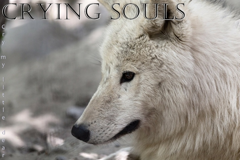 Crying Souls