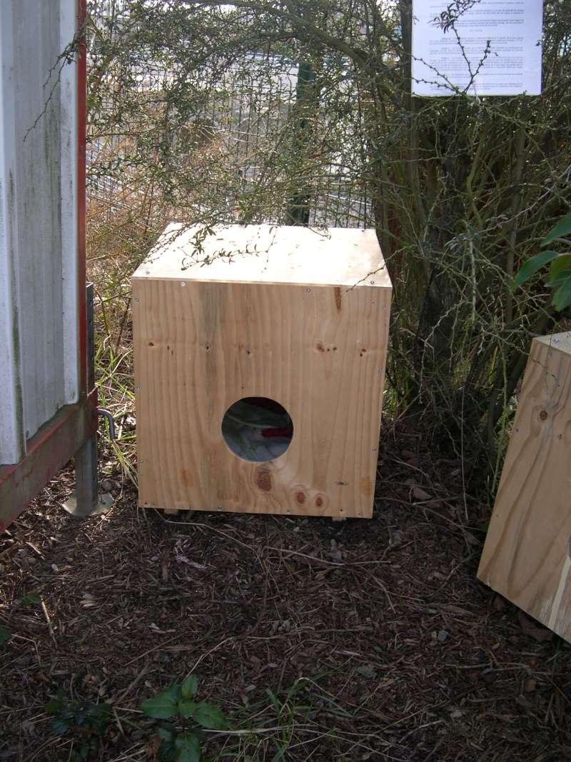 abris de fortune pour chats nomades. Black Bedroom Furniture Sets. Home Design Ideas