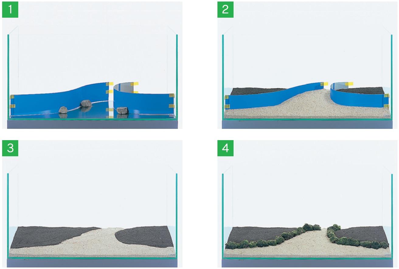 Pr 233 Paration D 233 Marrage Aquascaping Page 2