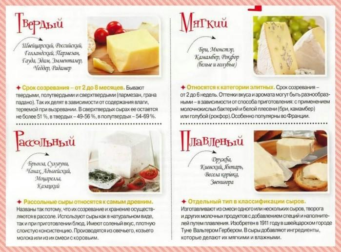 Сыр твердый или мягкий полезнее