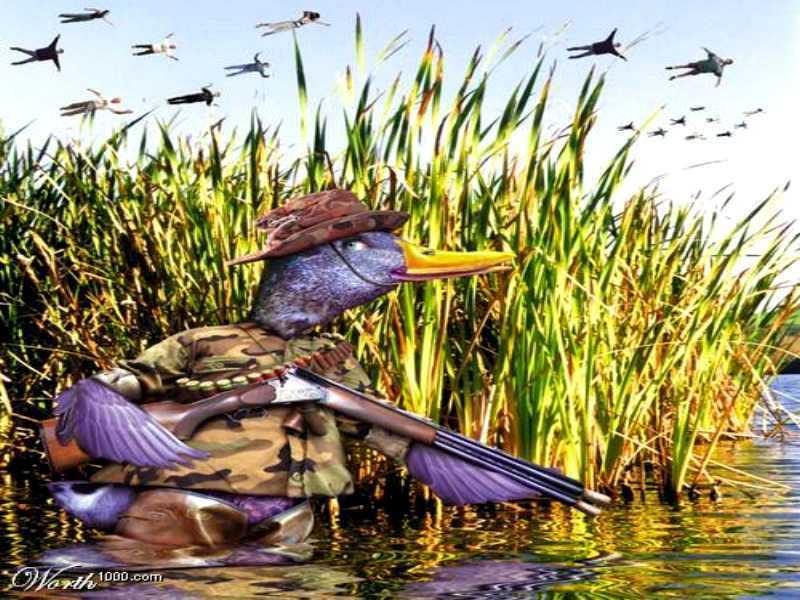 Très Anniversaire de notre canard ! DX14