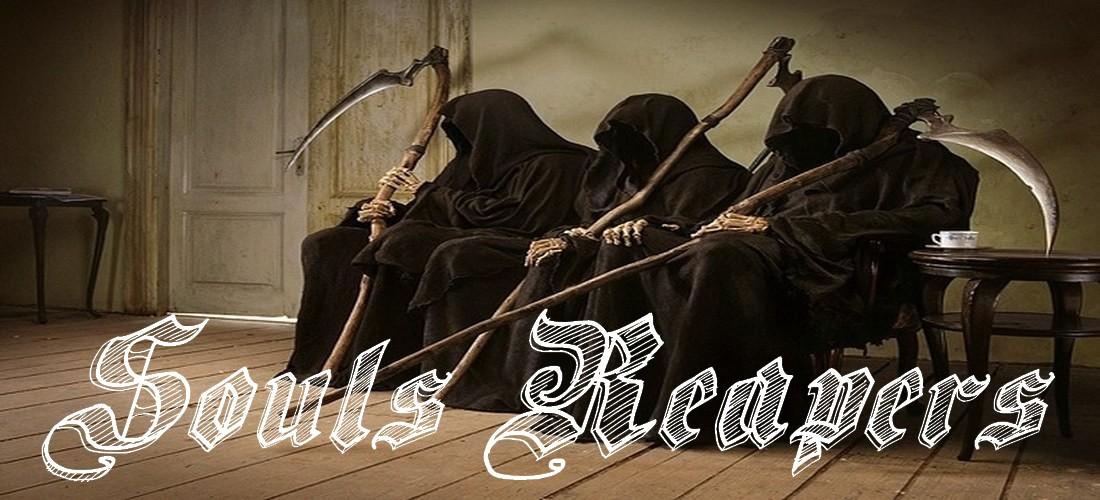 Souls Reapers Guilde Dofus Serveur Danathor