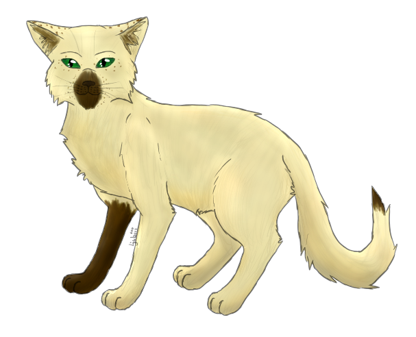 flussclan warrior cats