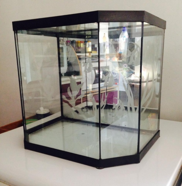 comment calculer le litrage de mon aquarium. Black Bedroom Furniture Sets. Home Design Ideas