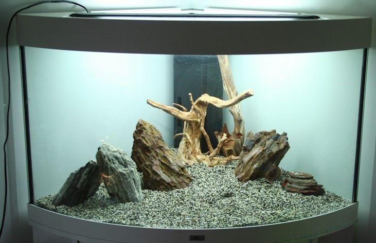 Seenhia aquarium d 39 angle 190l for Aquarium angle