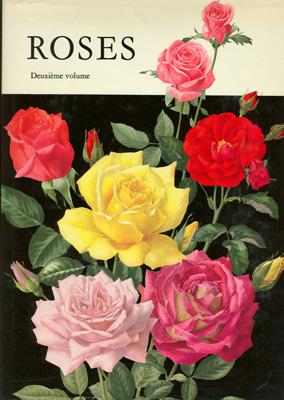 roses_14.jpg