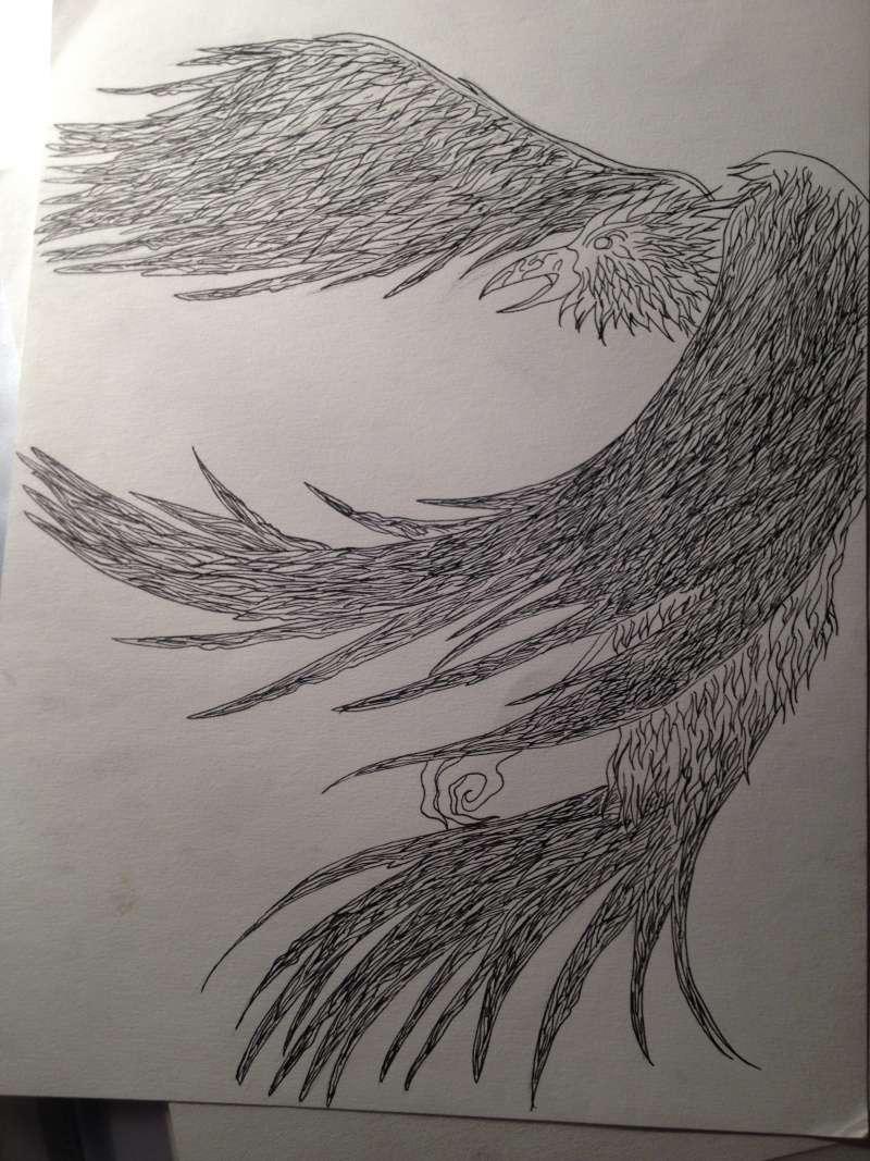 dessin oiseau corbeau phoenix