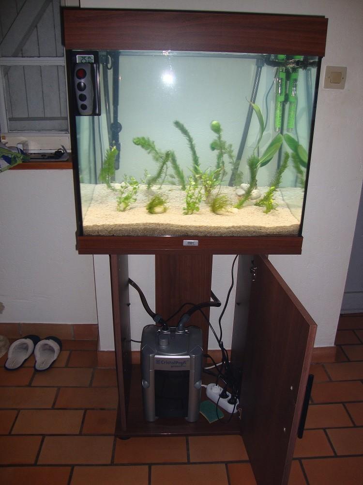 mise en eau de l'aquarium lido 120