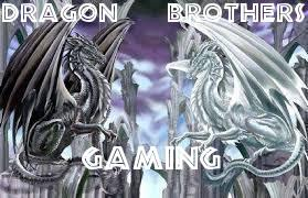 Dragon Brothers Gaming